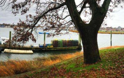 Edgewater Park – a beautiful respite